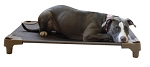 *NEW* Pet Cot - Large