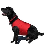 Competition Dog Vest